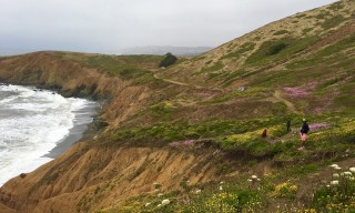Mori Point Trail